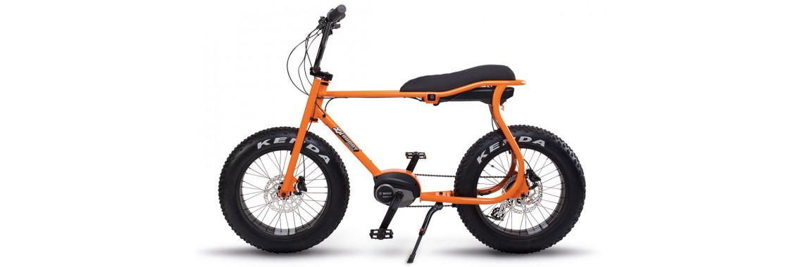 buddy orange 1